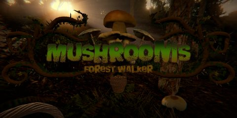 Mushrooms Forest Walker